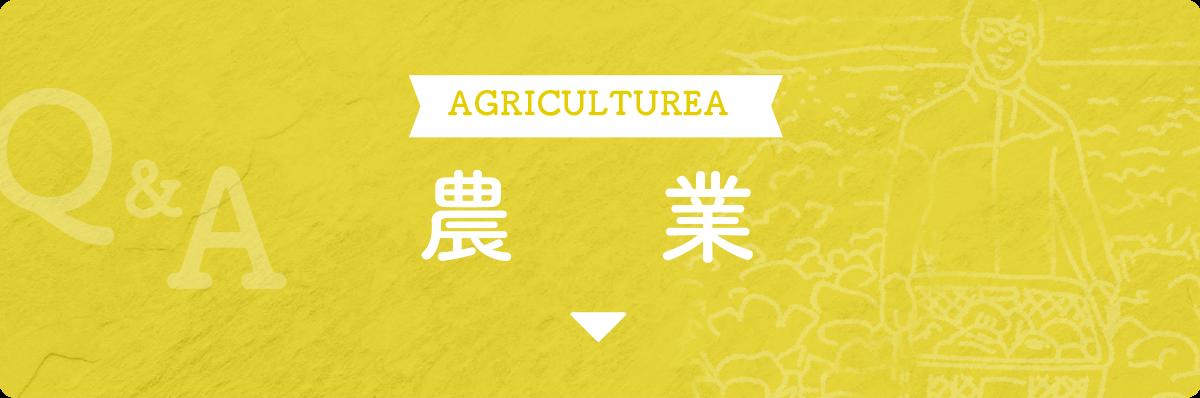 sp農業見出し画像